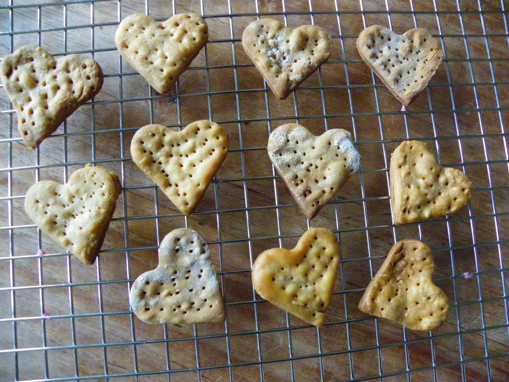 Glutenvrije Valentijnsdag Tom Poes